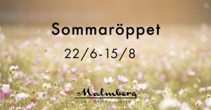 Sommaröppet på Malmbergs